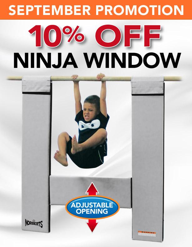 09-2017-ninja-window.jpg