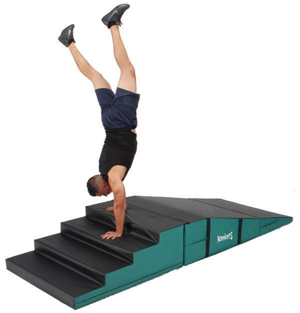 fitnesscat2.jpg