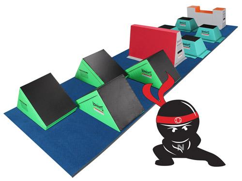 ninjacat2018.jpg